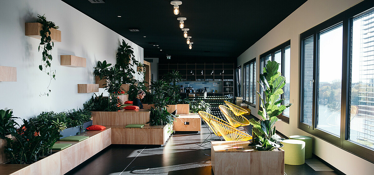 Zalando created a garden in the urban jungle. © Zalando