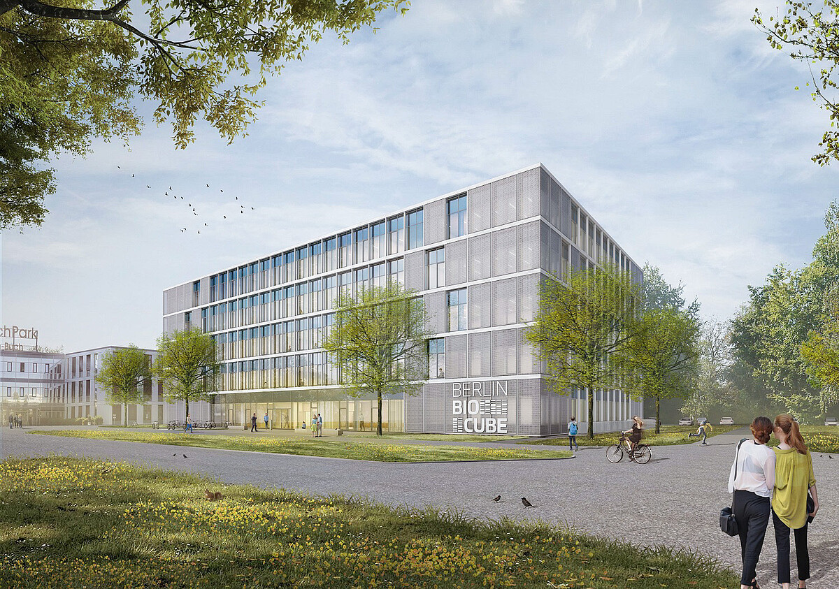 The BerlinBioCube, incubator for biotech and medtech startups under construction in Campus Berlin-Buch